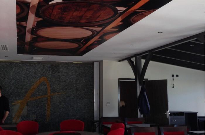 d cor int rieur toile tendue plafond enseignes du poitou. Black Bedroom Furniture Sets. Home Design Ideas